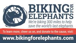 Biking For Elephants