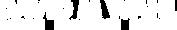 DavidMWahl_logo_white_WEB.png