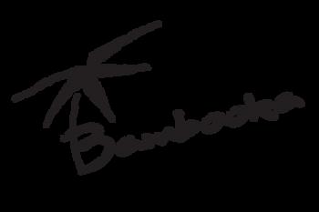 Bambooka