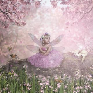 blossom fairy.