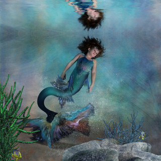 mermaid rebecca