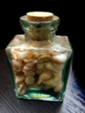 shells in a glass bottle