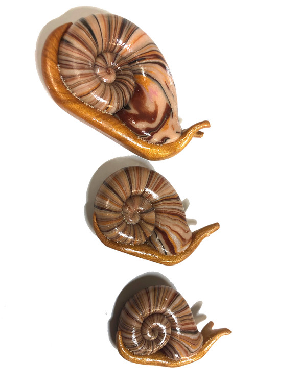 Wood Snails