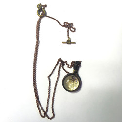 Preserved Necklace