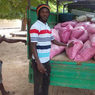 Rice for children in The Gambia