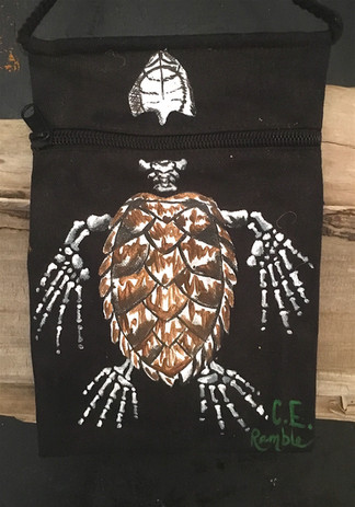 Turtle CE Bag.JPG