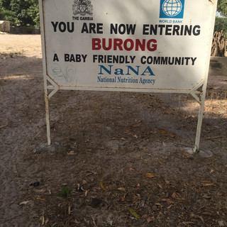 Lower Burong The Gambia
