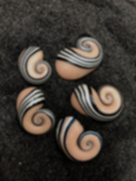 land snail shells made of clay