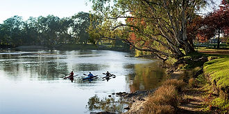 Kayaking on the Murray.jpg