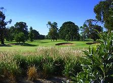 Barooga golf course.jpg