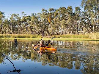 Paddling on the Murray.jpg