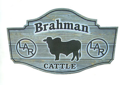 Brahman Sugn.jpg