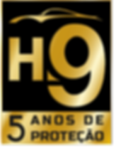 H95ANOS.png