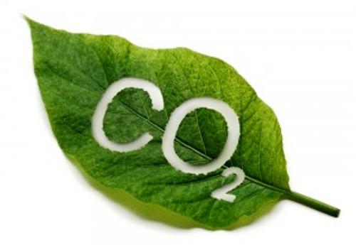 Le bilan carbone