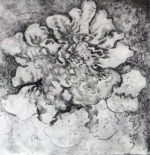 Lichen #1
