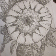 finished drawing