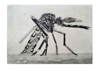 Moses the Mosquito