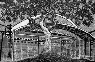 Stadium Tree