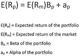 Optimal Risk Portfolio.jpg