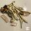 Thumbnail: Psilocybin mushrooms