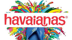 havs logo 4