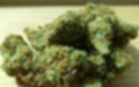 cannabis-448661__480.jpg