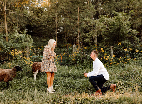 """Will Ewe Marry Me?"" A Magical Proposal at Green Dirt Farm"