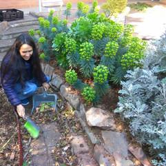 Garden Assistant