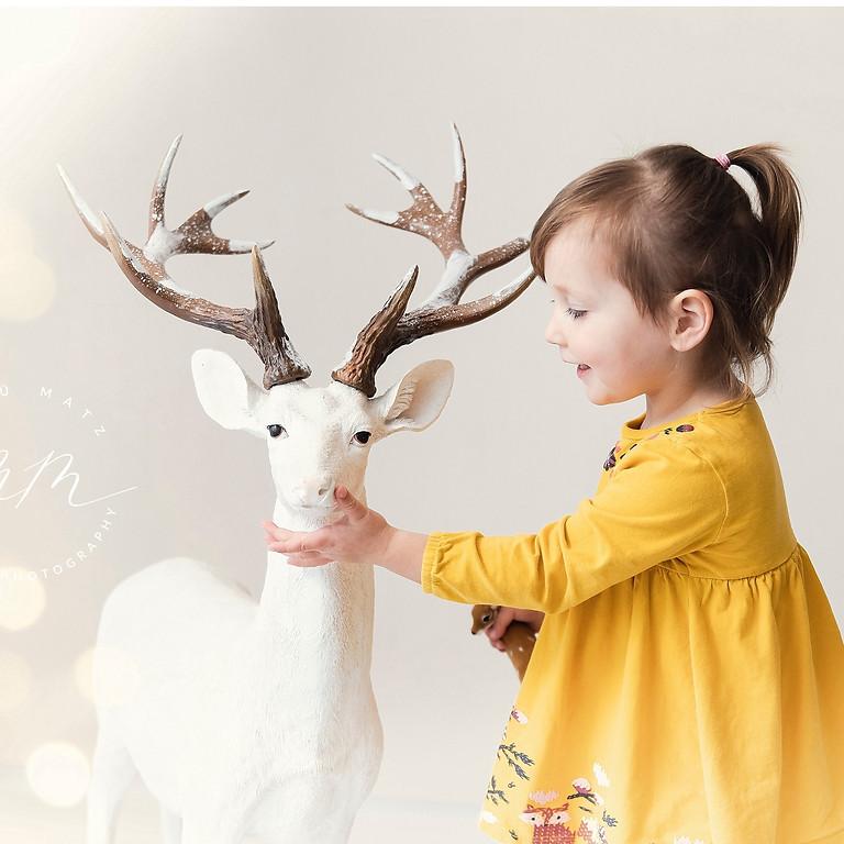Mini Shootings- weihnachtlich und neutral für Kinder+Familien