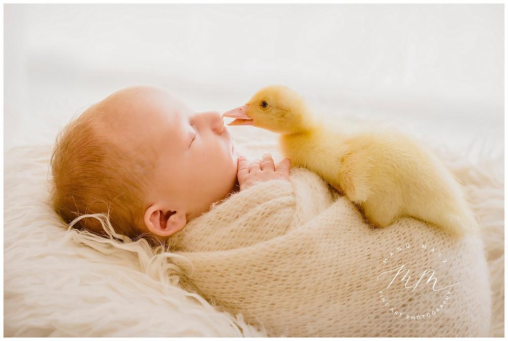 Ein Küsschen am Morgen vertreibt Kummer und Sorgen. Liebeolle und individuelle Neugeborenen- und Babyfotografie