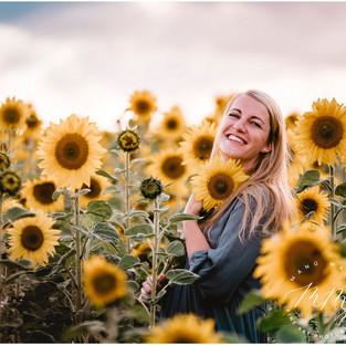 Strahlend schön im Sonnenblumenfeld