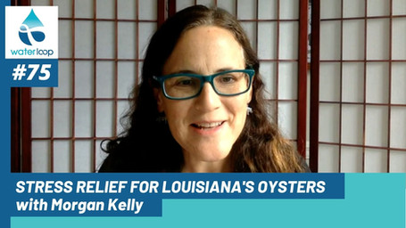 waterloop #75: Stress Relief for Louisiana's Oysters with Morgan Kelly