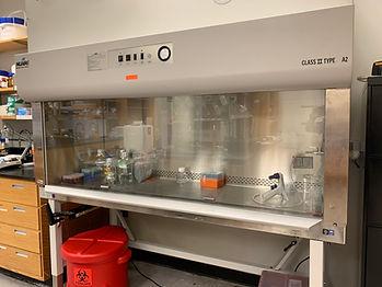 Biosafty cabinet.jpg
