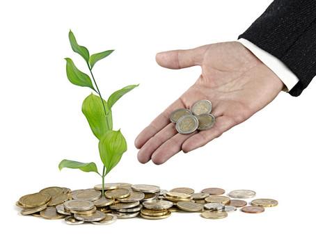 Fundos de Ativos Florestais no País chegam a R$9,6 Bilhões