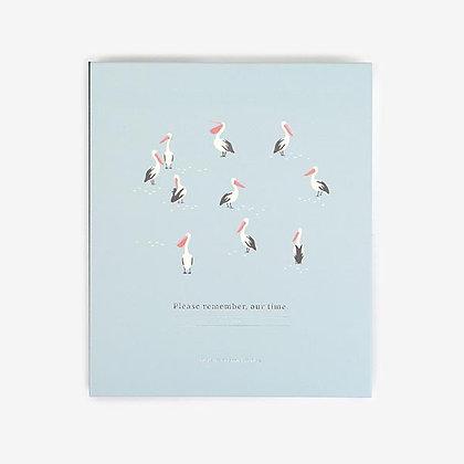 אלבום ציפורים
