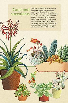 גלוית צמחים 5#