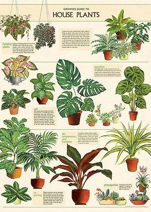 פוסטר צמחי בית