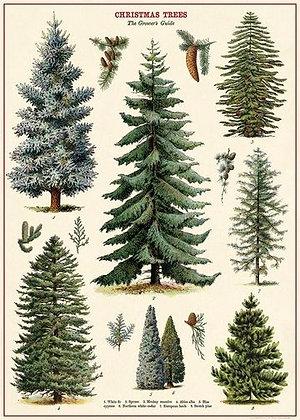פוסטר עצים