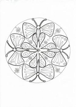 35 Schmetterlinge