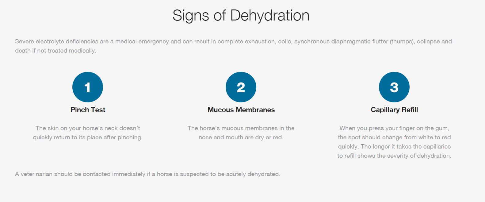 Don't Sweat It! Understanding Hydration & Electrolytes