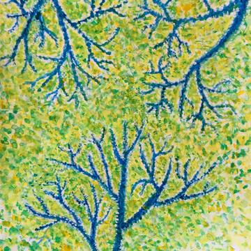 春の木漏れ日