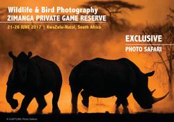 iCapture Photo Safaris