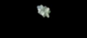 ElenaKonstantinidou Logo copy.png