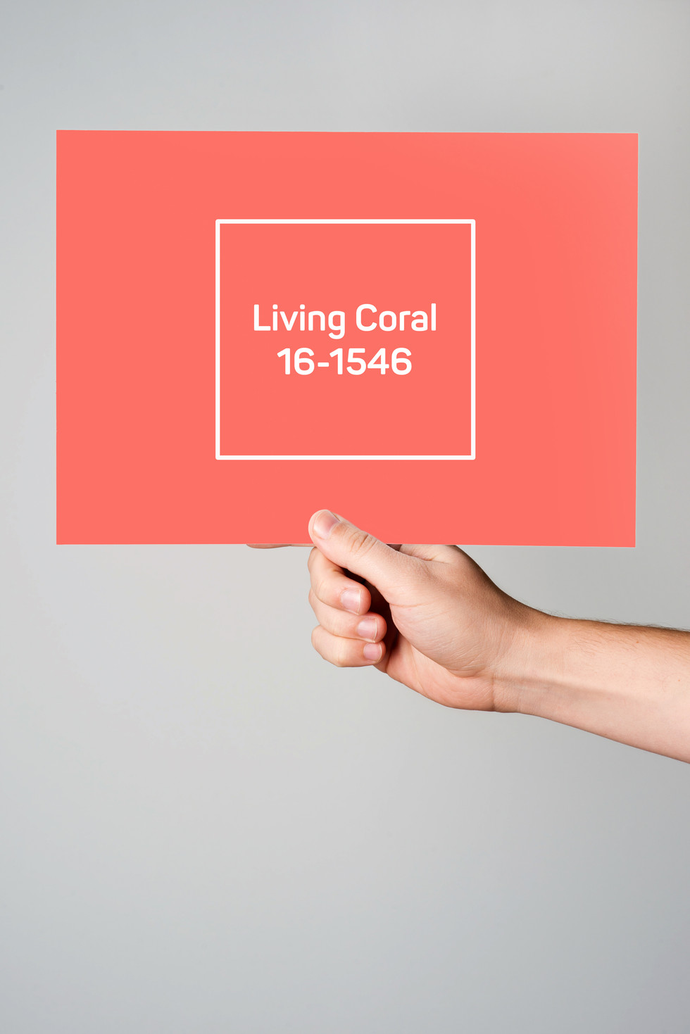 Living Coral-2019 Color of the Year & the Greater Good