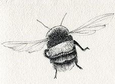 thumbnail_day1-bumble-bee--flight-pen-an