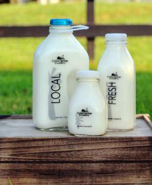Glass_Bottled_Milk-600x400.jpg