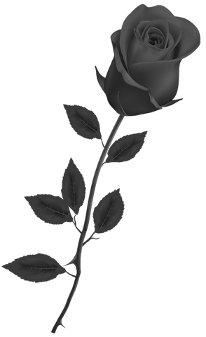 Beautiful_Stem_Red_Rose_PNG_bw.png