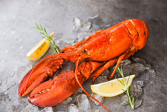 Lobster%20Night%20-%20events%20page_edit