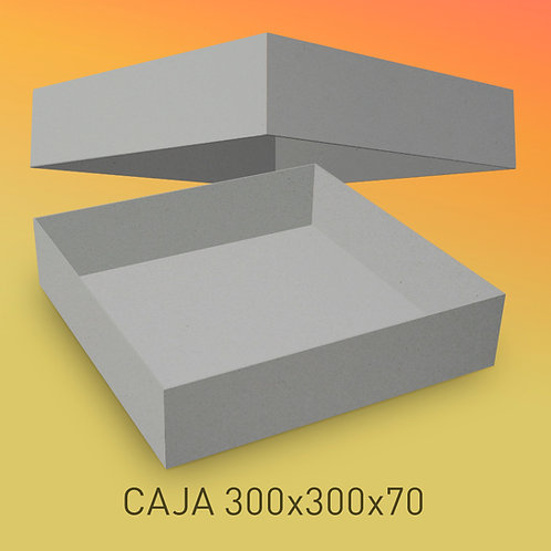 Caja de cartón impresa tamaño 300x300x76