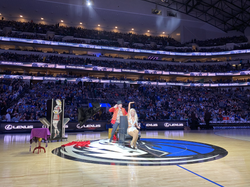 Performance for the Dallas Mavericks